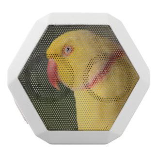 Lutino Indian Ringneck Parakeet Eye White Boombot Rex Bluetooth Speaker