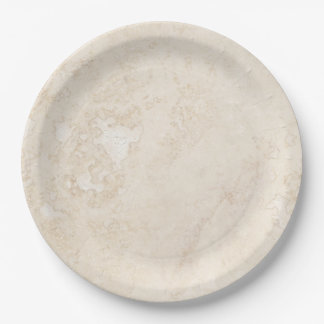 Luxe Upscale Marble Look 9 Inch Paper Plate