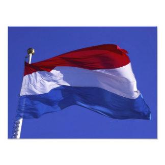 Luxembourg flag RF) Art Photo