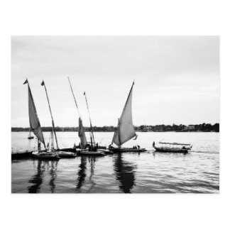 Luxor Egypt, Feluccas on the Nile 2 Postcard