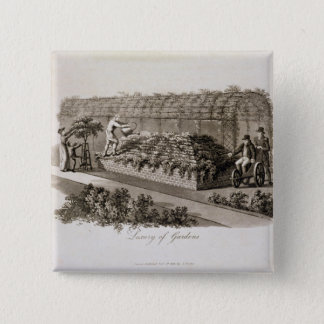 Luxury of Gardens, from 'Fragments on the Theory a 15 Cm Square Badge
