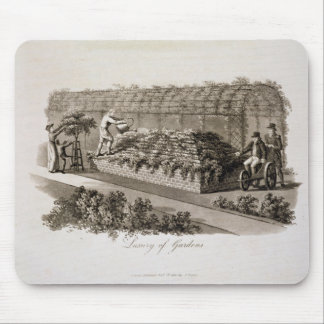 Luxury of Gardens, from 'Fragments on the Theory a Mouse Mat