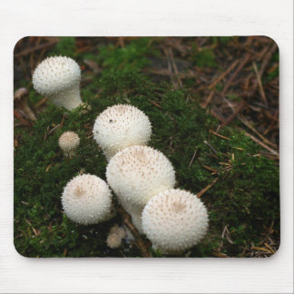 Lycoperdon puffball mushrooms mouse pad