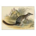 Lydekker - Banded Ant-Eater - Numbat Greeting Card
