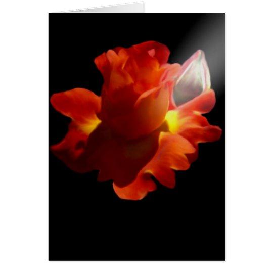 Lydia Rose Card