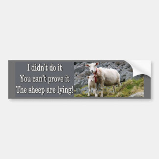 Lying Sheep Bumper Sticker
