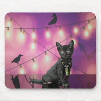 Lykoi Kitten & Crows Mousepad