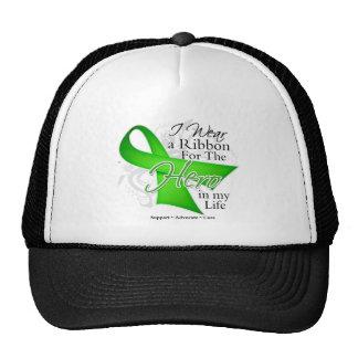 Lyme Disease Ribbon Hero in My Life Mesh Hats