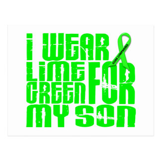 Lymphoma I WEAR LIME GREEN FOR MY SON 16 Postcards