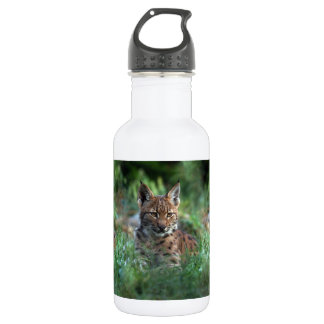 - lynx 532 ml water bottle