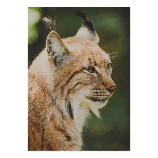 Lynx Business Card Template