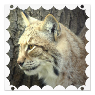 Lynx Cat Invitation