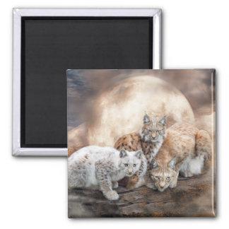 Lynx Moon Art Magnet