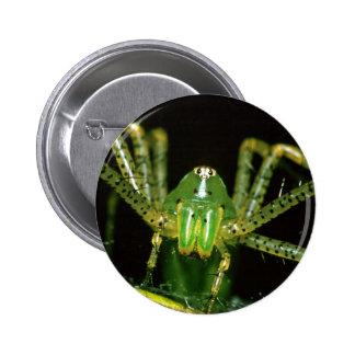 Lynx Spider 6 Cm Round Badge