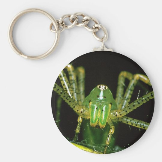 Lynx Spider Basic Round Button Key Ring