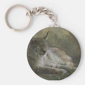 Lynx wild animal from north america key ring