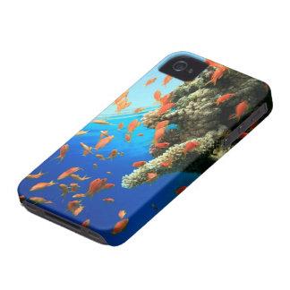 Lyretail anthias on coral reef Case-Mate iPhone 4 case