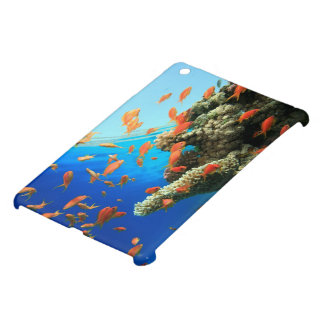 Lyretail anthias on coral reef cover for the iPad mini