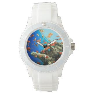 Lyretail anthias on coral reef wristwatch
