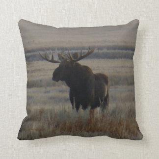 M0001 Bull Moose Cushion