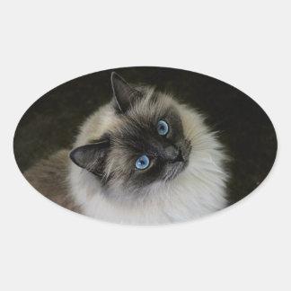 M`Lady Oval Sticker