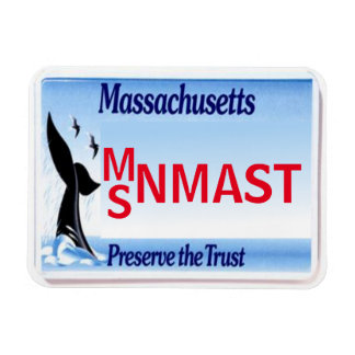 MA License Plate Magnet
