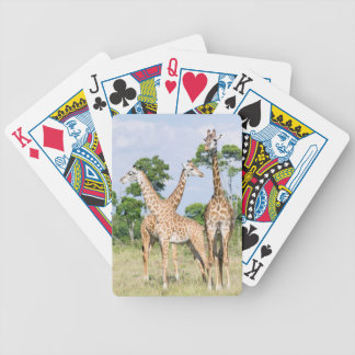 Maasai Giraffe Bicycle Playing Cards