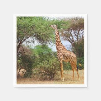 Maasai Giraffe Disposable Serviette