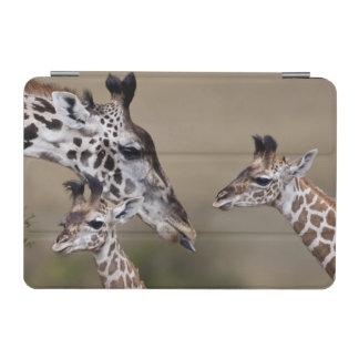 Maasai Giraffe (Giraffe Tippelskirchi) as seen iPad Mini Cover