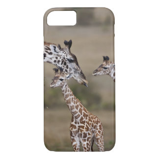 Maasai Giraffe (Giraffe Tippelskirchi) as seen iPhone 8/7 Case