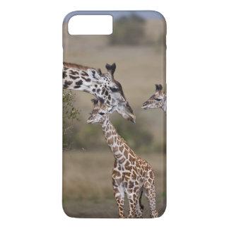 Maasai Giraffe (Giraffe Tippelskirchi) as seen iPhone 8 Plus/7 Plus Case