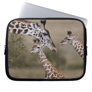 Maasai Giraffe (Giraffe Tippelskirchi) as seen Laptop Sleeve