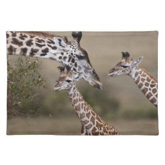 Maasai Giraffe (Giraffe Tippelskirchi) as seen Place Mats