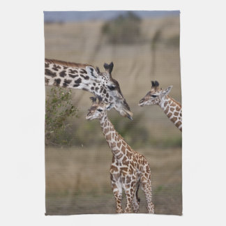 Maasai Giraffe (Giraffe Tippelskirchi) as seen Tea Towel