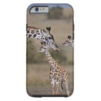 Maasai Giraffe (Giraffe Tippelskirchi) as seen Tough iPhone 6 Case