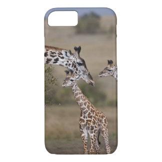 Maasai Giraffe (Giraffe Tippelskirchi) wie gesehen iPhone 8/7 Case