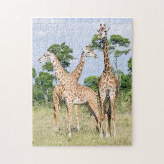 Maasai Giraffe Jigsaw Puzzle