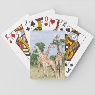 Maasai Giraffe Playing Cards
