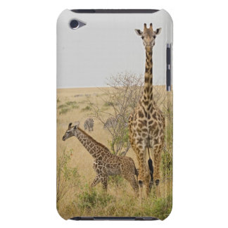 Maasai Giraffes roaming across the Maasai Mara Barely There iPod Covers