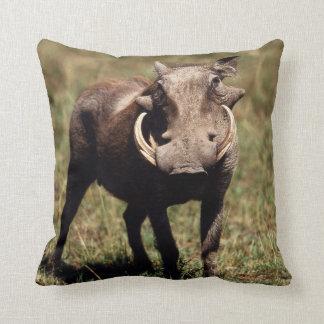 Maasai Mara National Reserve, Desert Warthog Cushion