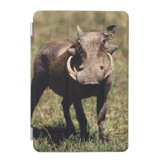 Maasai Mara National Reserve, Desert Warthog iPad Mini Cover