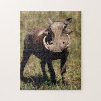 Maasai Mara National Reserve, Desert Warthog Jigsaw Puzzle