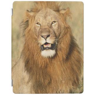 Maasai Mara National Reserve, Male Lion iPad Cover