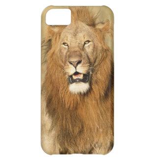Maasai Mara National Reserve, Male Lion iPhone 5C Case