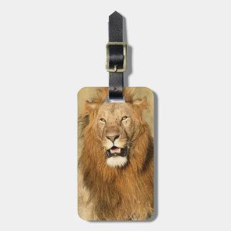Maasai Mara National Reserve, Male Lion Luggage Tag