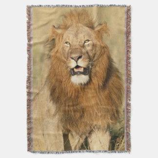 Maasai Mara National Reserve, Male Lion Throw Blanket