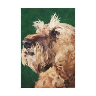 Mabel the Irish terrier Canvas Print