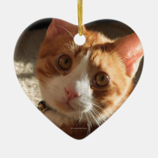 Mac Cat Photo Heart Ornament