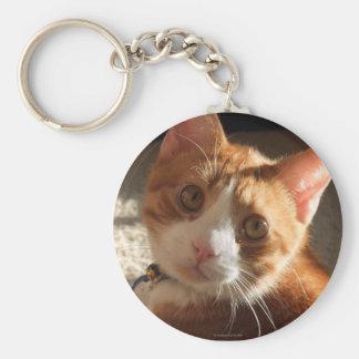 Mac Cat Photo Keychain
