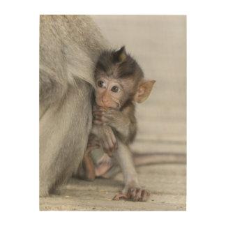 Macaque Monkey Wood Wall Art